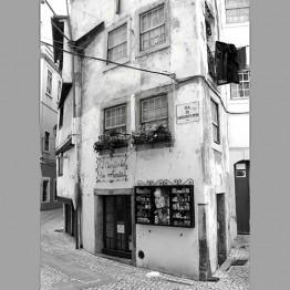 Miluji Porto 2